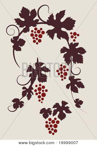 Grape vines silhouettes set.