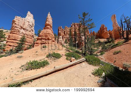 Bryce Canyon National Park in Utah. USA
