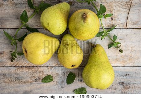 Fresh organic pears on old wood. Fruit background. Pear autumn harvest.