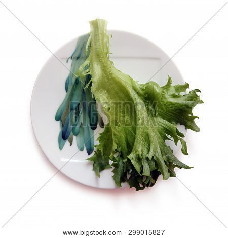 Still Life With Fresh Green Lettuce Leaf On The Beautiful Plate Against White Background. Selective
