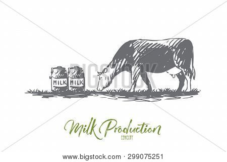 Milk, Cow, Farm, Production, Bottle Concept. Hand Drawn Cow And Bottles With Fresh Milk Concept Sket