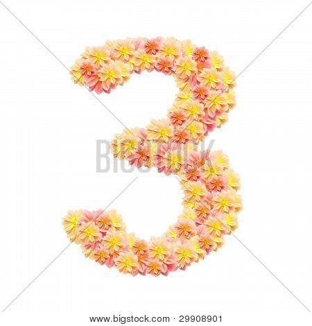3,flower Alphabet Isolated On White