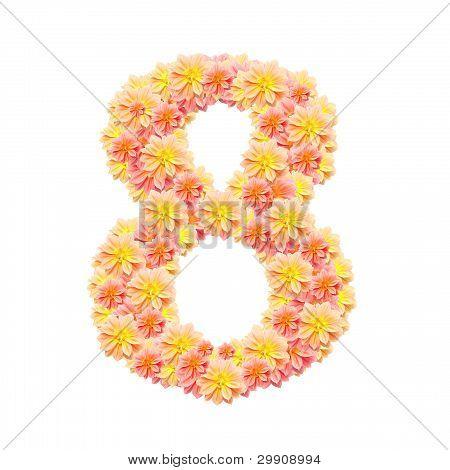 8,flower Alphabet Isolated On White