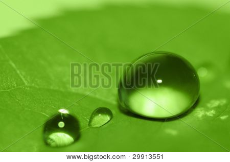 water droplets on a green leaf (shallow DOF)