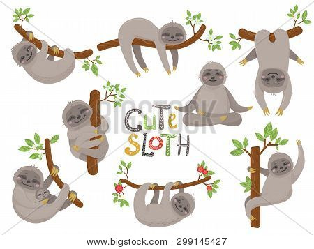 Big Set Of Cute Sloths Character In Various Positions. Vector Illustration For Nursery Poster, Print