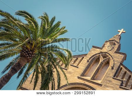 An Ancient Historic Church (sant Jaume) And A Palm Tree In Mallorca, Spain, With Copy Space