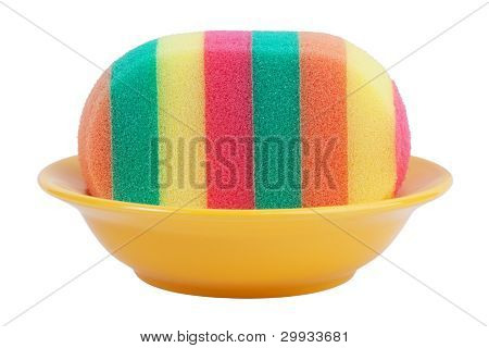Striped Sponge In A Dish