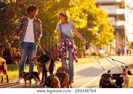 Dog walkers with group dog enjoying in park