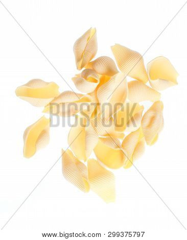 Raw Dry Conchiglioni Noodle Isolated On White Background