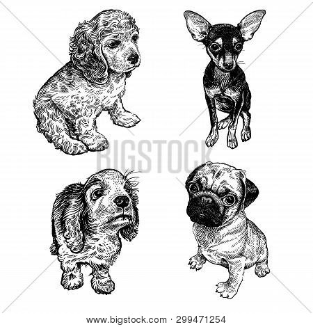 Cute Puppies Of Terrier, Spaniel And Pug Set. Home Pets Isolated On White Background. Sketch. Vector