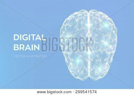 Brain. Digital Brain. 3d Science And Technology Concept. Neural Network. Iq Testing, Artificial Inte