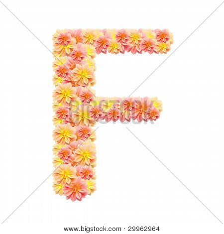 F,flower Alphabet Isolated On White