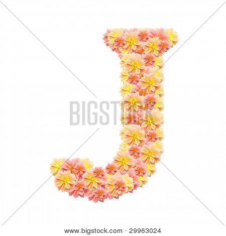J,flower Alphabet Isolated On White