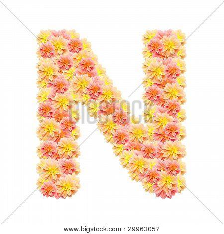 N,flower Alphabet Isolated On White