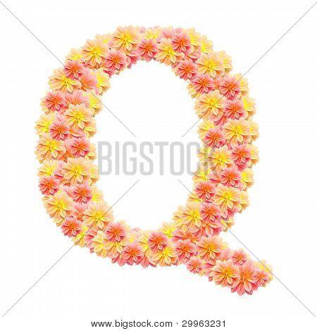 Q,flower Alphabet Isolated On White