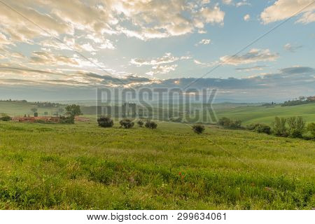 View Of The Val D Orcia From San Quirico D Orcia In The Morning With The Lights Of Dawn. Siena, Tusc