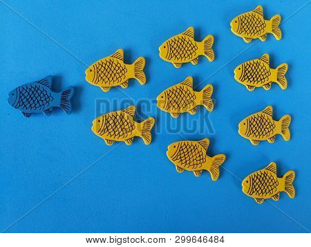 Leadership concept, blue fish lead a school of yellow fish