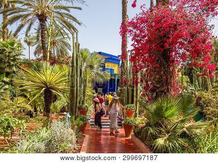 Le Jardin Majorelle, Marrakech, Morocco - April 28, 2019:  Le Jardin Majorelle, Amazing Tropical Gar