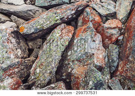 Multicolored Boulder Stream. Loose Rock Close Up. Water Under Randomly Scattered Stones. Amazing Det