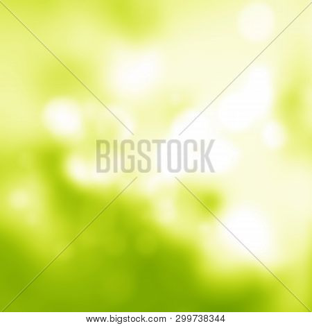 Sunny Abstract Green Soft Nature Background. Fresh Nature. Nature Blurred Light Abstract Background