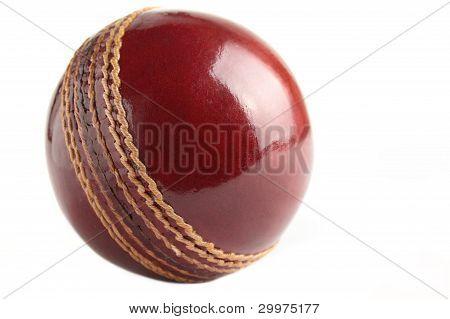 Cricket Ball.