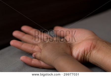 Hand Of A Baby In His Mother's Hand