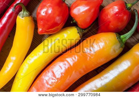 Heap Of Various Chili Peppers On A Wooden Background. Cooking Ingredients, Spicey Taste And Organic