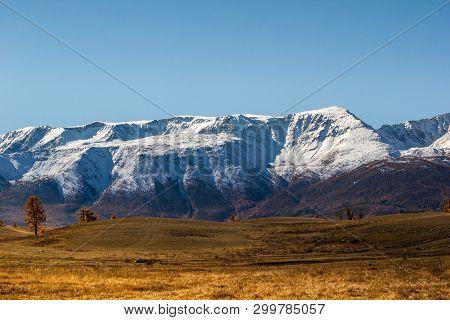 Autumn In Mountain Valley. Mountain Range And Yellow Forest On Horizon