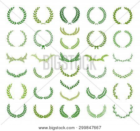 Set Of Circular And Round Green Laurel Foliate, Oak And Olive Wreaths. Can Be Used As Design Element