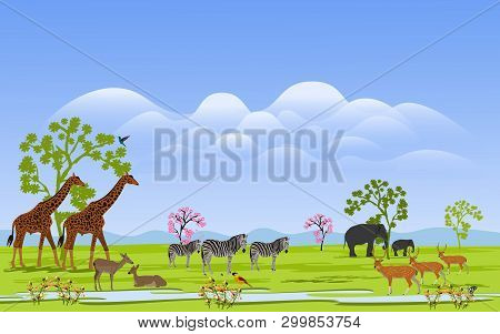 Herd Of Wild Animals In The Green Grass Field There Are Mountains And Clusters In The Background.