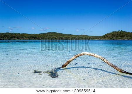 Lake Mackenzie On Fraser Island Off The Sunshine Of Queensland Is A Beautiful Freshwater Lake Popula