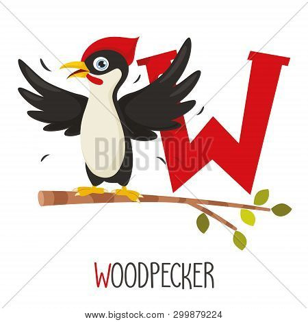 Vector Illustration Of Alphabet Letter W And Woodpecker