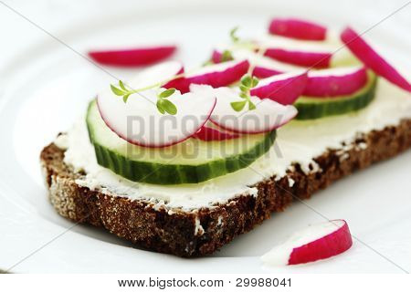 Wholesome sandwich with cheese,  garden radish and  cucumber-Healthy Eating
