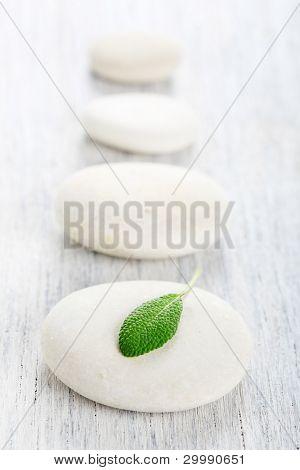 white zen stones and leaf