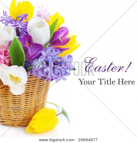 Bouquet of spring flowers on white isolated  background
