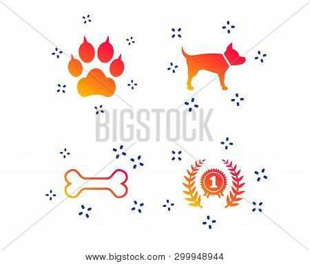 Pets Icons. Cat Paw With Clutches Sign. Winner Laurel Wreath And Medal Symbol. Pets Food. Random Dyn