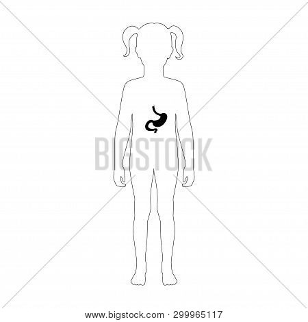Vector Isolated Illustration Of Stomach Anatomy In Girl Body. Human Digestive System Icon. Healthcar