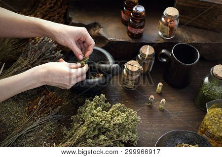 Herbal Oils And Natural Medicines. Herbal Medicine And Alternative Medicine..