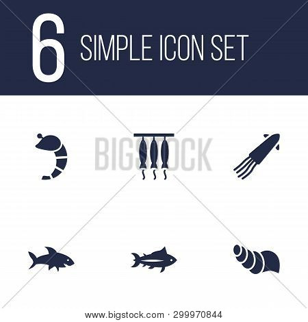 Set Of 6 Seafood Icons Set. Collection Of Fish, Conch, Squid And Other Elements.