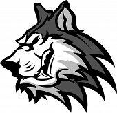 Husky Dog Head Graphic Team Mascot Vector Image poster