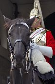 ceremonial soldier in whitehall, london poster