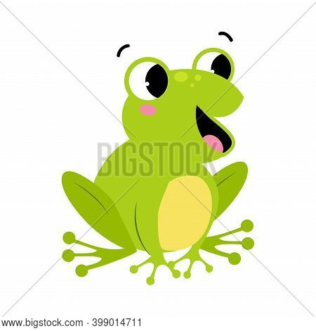 Green Frog With Protruding Eyes Sitting And Quacking Vector Illustration