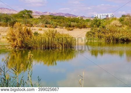 Water Pool In The Eilat Ornithological Park, Southern Israel