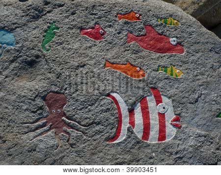 fishes on a rock