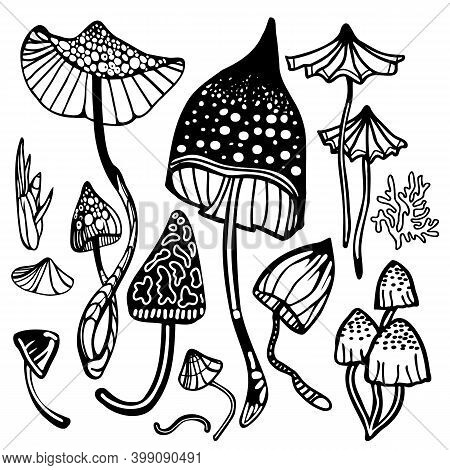 Set Of Magic Psychedelic Mushrooms. Coloring Page Hallucinogenic, Fantazy Mushrooms. Black And White