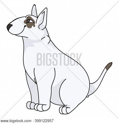 Cute Cartoon Bull Terrier Sitting Dog Vector Clipart. Pedigree Kennel Doggie Breed For Kennel Club.