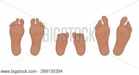 Vector Illustration Of A Baby, Mom And Dad Soles. Feet, Sole, Body Part.