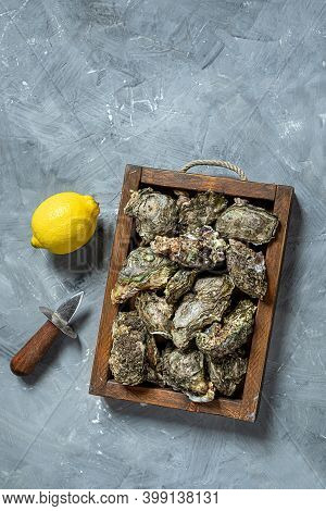 Oysters In A Box And Lemon