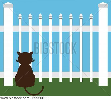 Rear View Of A House Cat In Silhouette Peering Through A White Picket Fence