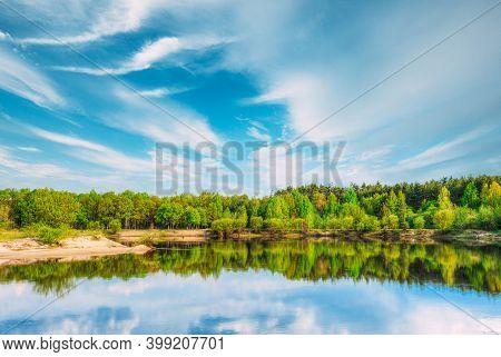 Summer Forest On River Coas. River Water Nature Landscape. Belarus, Europe.